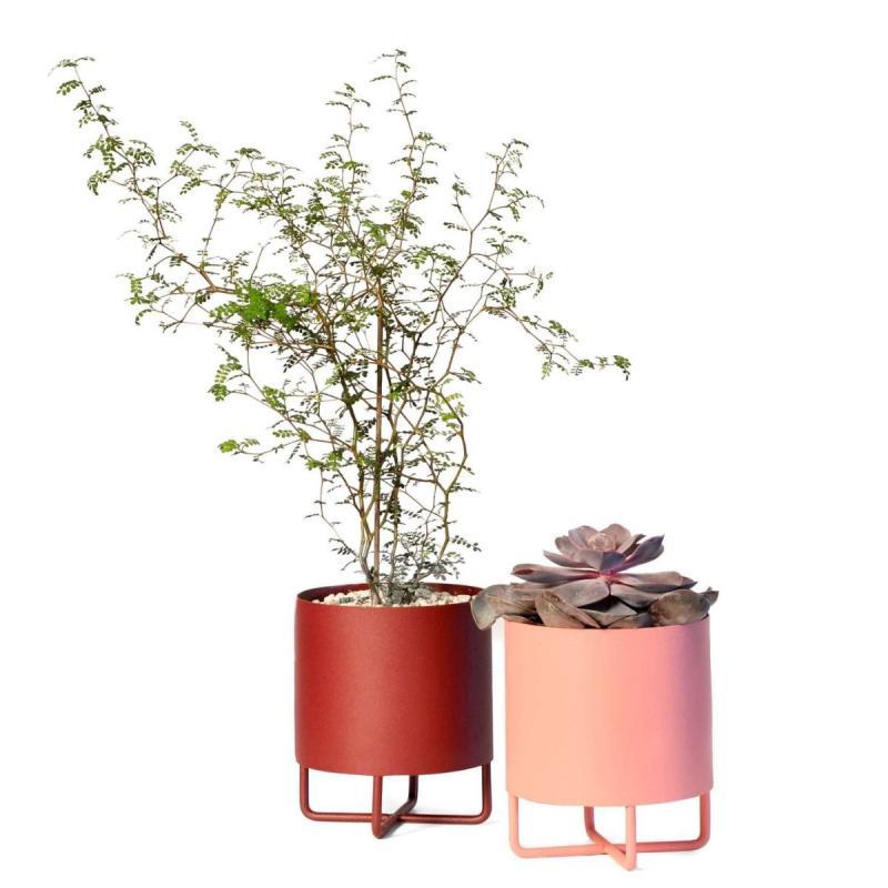 Shima Garden Mini Flowerpot, Ø13cm